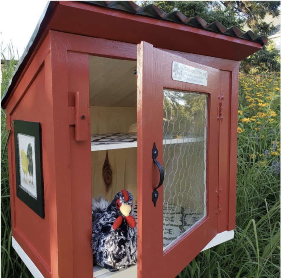 Plus chicken in diverse and inclusive Little Free Library in Duluth, Minnesota